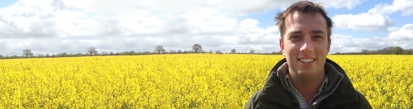 Farmers must stay a step ahead when planting oilseed fields