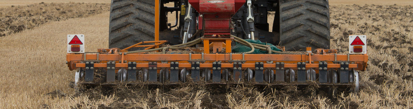 Seedbed moisture the first step to success with oilseed rape
