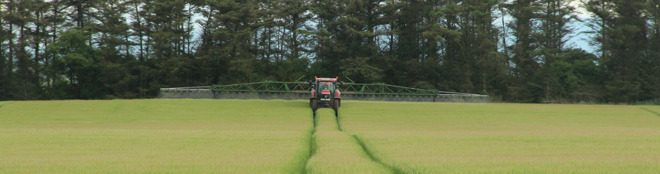 Focus on agronomy to get most from spring barley