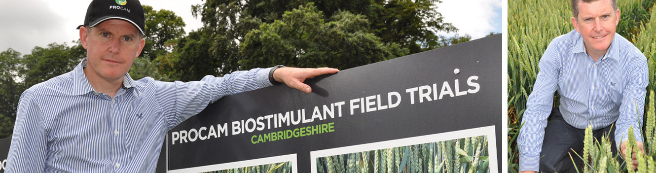 Make the most of season's wheat potential, growers urged