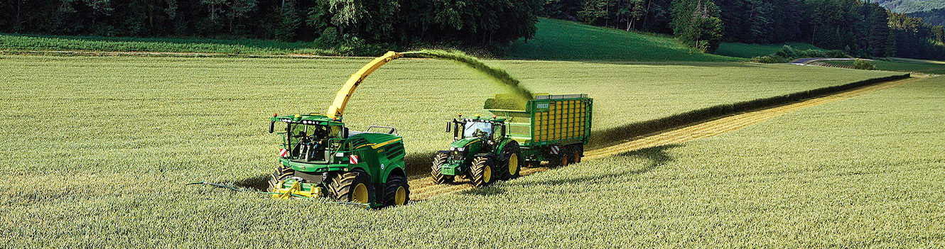 Wholecrop offers dual benefits to overcome forage shortages